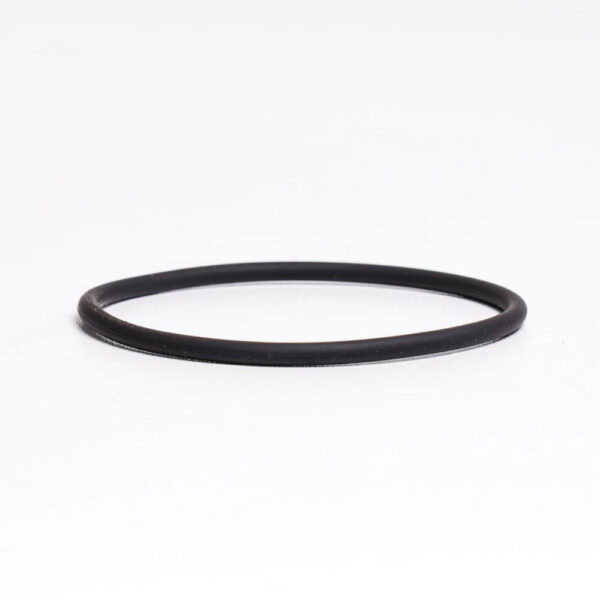 O-ring t/pumpehoved 5 ltr t/kemikaliepumpe solbadet