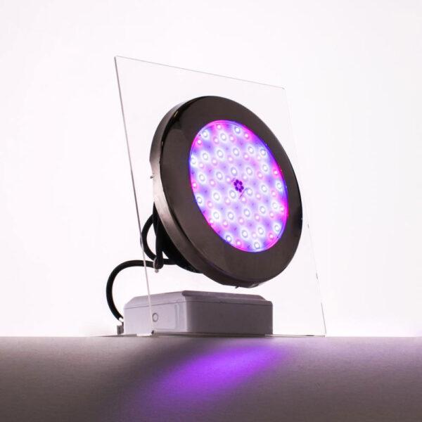 Moonlight LED lamper (komplet med kabler og flanger) solbadet